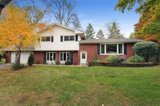 80 E Forest Lane  , Palatine, IL 60067 (MLS #08757361) :: The Jacobs Group