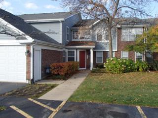 207 W Jennifer Lane  1, Palatine, IL 60067 (MLS #08758411) :: The Jacobs Group