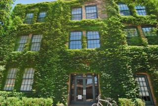 5235 N Ravenswood Avenue  34, Chicago, IL 60640 (MLS #08760811) :: Jameson Sotheby's International Realty