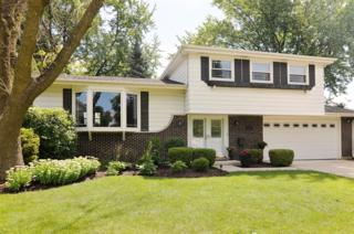 2025 N Elizabeth Drive  , Arlington Heights, IL 60004 (MLS #08761471) :: The Jacobs Group