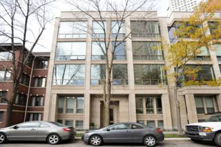 416 W Deming Place  2W, Chicago, IL 60614 (MLS #08763495) :: Jameson Sotheby's International Realty