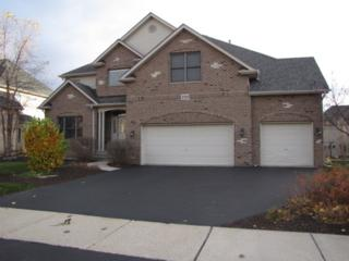 2520  Spartina Lane  , Naperville, IL 60564 (MLS #08766382) :: The Jacobs Group