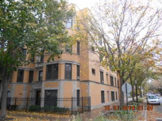 1309 W Rosemont Avenue  1, Chicago, IL 60660 (MLS #08766872) :: Jameson Sotheby's International Realty
