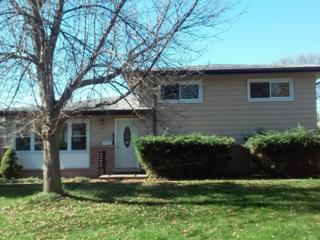 102  Stacy Court  , Glenview, IL 60025 (MLS #08773609) :: Jameson Sotheby's International Realty