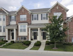 6549  Lilac Boulevard  , Hanover Park, IL 60133 (MLS #08785388) :: Jameson Sotheby's International Realty