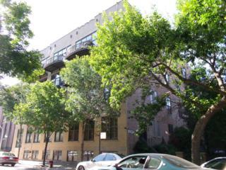 1330 W Monroe Street  216, Chicago, IL 60607 (MLS #08787669) :: Jameson Sotheby's International Realty
