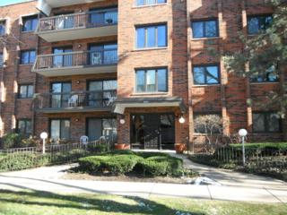 9201 N Drake Avenue  409, Evanston, IL 60203 (MLS #08790752) :: Jameson Sotheby's International Realty