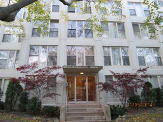 1633 W Thome Avenue  103, Chicago, IL 60660 (MLS #08791066) :: Jameson Sotheby's International Realty