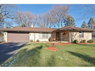 972  Hillcrest Road  , Elgin, IL 60123 (MLS #08791404) :: The Jacobs Group
