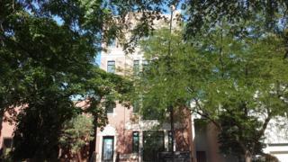 1827 N Larrabee Street  3, Chicago, IL 60614 (MLS #08791661) :: Jameson Sotheby's International Realty