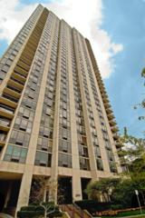 2500 N Lakeview Avenue  302, Chicago, IL 60614 (MLS #08791671) :: Jameson Sotheby's International Realty