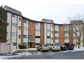 560  Vine Avenue  206, Highland Park, IL 60035 (MLS #08794133) :: Jameson Sotheby's International Realty