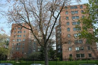 1132 W Lunt Avenue  2B, Chicago, IL 60626 (MLS #08795777) :: Jameson Sotheby's International Realty