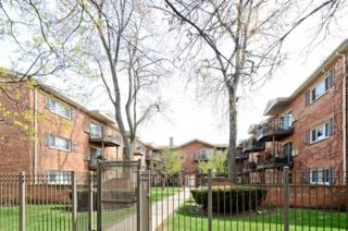 1529 W Farwell Avenue  1S, Chicago, IL 60626 (MLS #08796050) :: Jameson Sotheby's International Realty