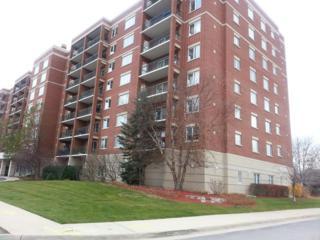 5555 N Cumberland Avenue  908, Chicago, IL 60656 (MLS #08797809) :: Organic Realty