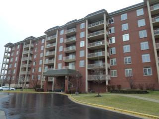 8300  Callie Avenue  206, Morton Grove, IL 60053 (MLS #08798849) :: Organic Realty