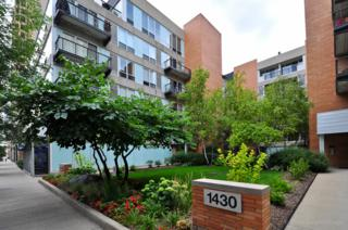 1440 S Michigan Avenue  317, Chicago, IL 60605 (MLS #08798985) :: Jameson Sotheby's International Realty