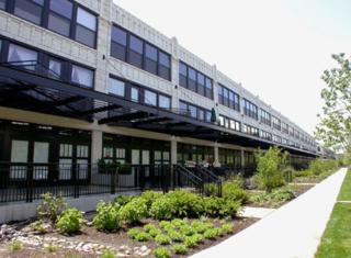 1000 W 15th Street  323, Chicago, IL 60608 (MLS #08801374) :: City Point Realty LLC