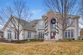 4106  Royal Fox Drive  , St. Charles, IL 60174 (MLS #08804419) :: The McKay Group