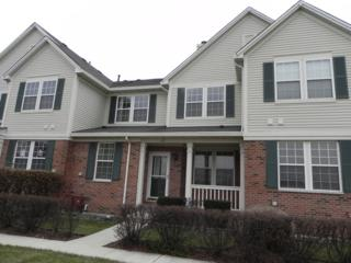 62 N Palazzo Drive  17-62-1, Addison, IL 60101 (MLS #08804662) :: The Jacobs Group