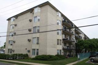 5506  Lincoln Avenue  320, Morton Grove, IL 60053 (MLS #08804709) :: Jameson Sotheby's International Realty