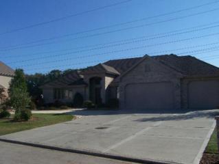 16053  Ridgewood Drive  , Homer Glen, IL 60491 (MLS #08804982) :: The Jacobs Group