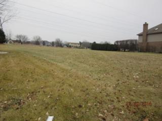 16057  Ridgewood Drive  , Homer Glen, IL 60491 (MLS #08804986) :: The Jacobs Group