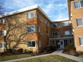 1619 W Howard Street  5B, Evanston, IL 60202 (MLS #08813469) :: Jameson Sotheby's International Realty