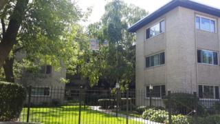 1325 W Birchwood Avenue  1DE, Chicago, IL 60626 (MLS #08814638) :: Jameson Sotheby's International Realty