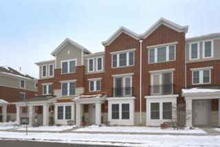 205  Hyde Street  10-2, Arlington Heights, IL 60005 (MLS #08817624) :: The Lifestyles By Joe Team