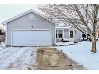 1055  Plum Tree Drive  , Crystal Lake, IL 60014 (MLS #08819660) :: City Point Realty LLC