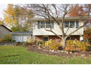 1490  Ashley Road  , Hoffman Estates, IL 60169 (MLS #08819915) :: Jameson Sotheby's International Realty