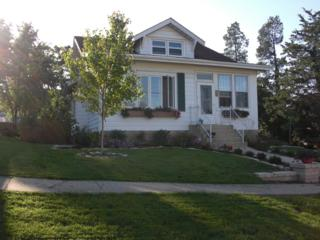724  Walnut Street  , Lemont, IL 60439 (MLS #08820126) :: City Point Realty LLC