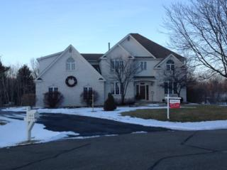 11619  Brittany Court  , Spring Grove, IL 60081 (MLS #08825624) :: The Lifestyles By Joe Team