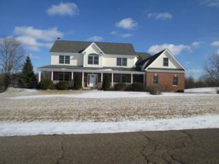 2004  Black Oak Drive  , Mchenry, IL 60050 (MLS #08827101) :: The Lifestyles By Joe Team