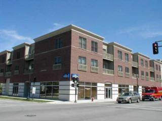 2951  Central Street  307, Evanston, IL 60201 (MLS #08828489) :: City Point Realty LLC