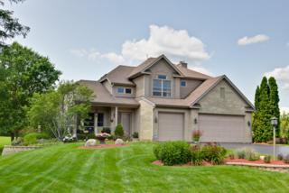 11613  Brittany Court  , Spring Grove, IL 60081 (MLS #08834040) :: The Lifestyles By Joe Team