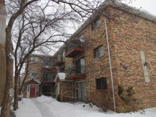 5766 W Higgins Avenue  B2, Chicago, IL 60630 (MLS #08839157) :: Organic Realty