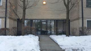 2315 E Olive Street  1C, Arlington Heights, IL 60004 (MLS #08839966) :: The Lifestyles By Joe Team