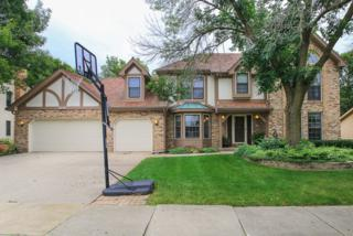 1146 E Johnson Drive  , Naperville, IL 60540 (MLS #08848627) :: The Lifestyles By Joe Team