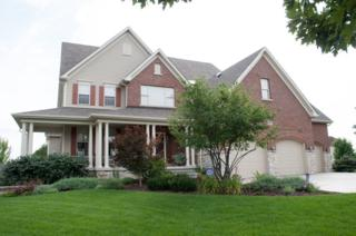 1312  Deerpath Drive  , Yorkville, IL 60560 (MLS #08848629) :: The Lifestyles By Joe Team