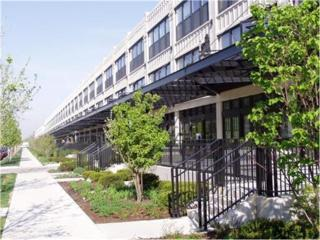 1001 W 15th Street  219, Chicago, IL 60608 (MLS #08849291) :: City Point Realty LLC