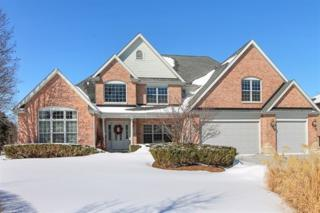 650  Haven Drive  , Barrington, IL 60010 (MLS #08850153) :: The Lifestyles By Joe Team