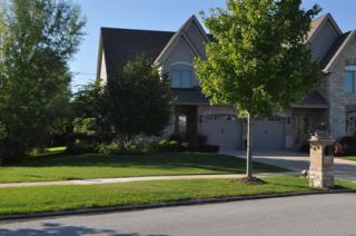 9946  Folkers Drive  9946, Frankfort, IL 60423 (MLS #08853893) :: City Point Realty LLC