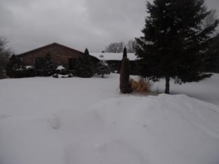 6531  Shadow Ridge Road  , Rockford, IL 61107 (MLS #08871298) :: Key Realty