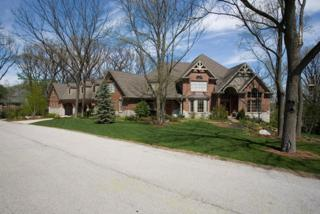 3N696  Oakmont Drive  , Elburn, IL 60119 (MLS #08875683) :: The McKay Group
