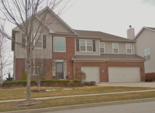 4300  Gladstone Drive  , Lake In The Hills, IL 60156 (MLS #08876308) :: The McKay Group