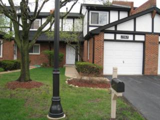 1567  Columbia Court  0, Elk Grove Village, IL 60007 (MLS #08897424) :: The Jacobs Group