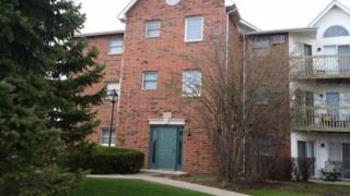 1375  Cunat Court  2F, Lake In The Hills, IL 60156 (MLS #08898683) :: Key Realty
