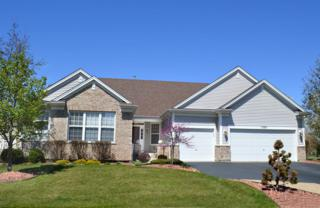 1350  Hall Street  , Sugar Grove, IL 60554 (MLS #08902505) :: The Jacobs Group